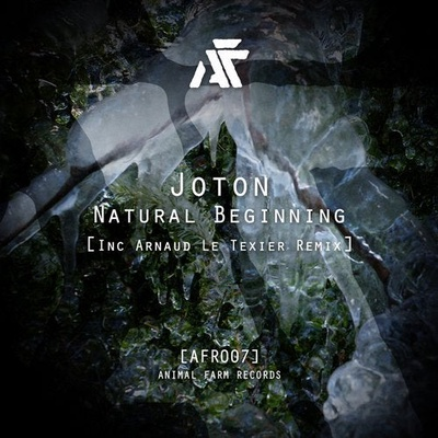 Natural Beginning (Inc Arnaud Le Texier Remix)